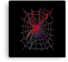 Red Spider on Web Canvas Print
