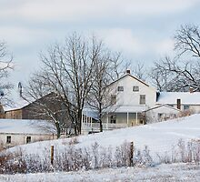 Amish Farmstead in Winter by Michael  Dreese