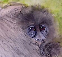 Mountain  Gorilla  Baby by Heidi Mooney-Hill