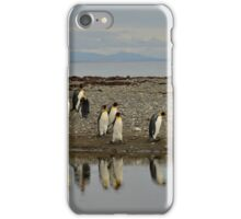 King Penguin iPhone Case/Skin
