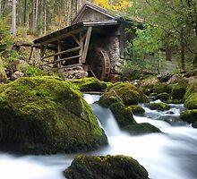 Old Watermill by Bernhard Siegl