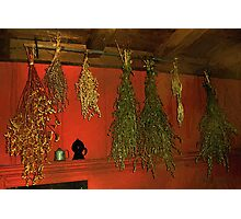 Harvest of Herbs Photographic Print