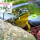 Beware of Frog! by sillyfrog