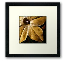 Study in Ochre: To Paint a Flower Framed Print