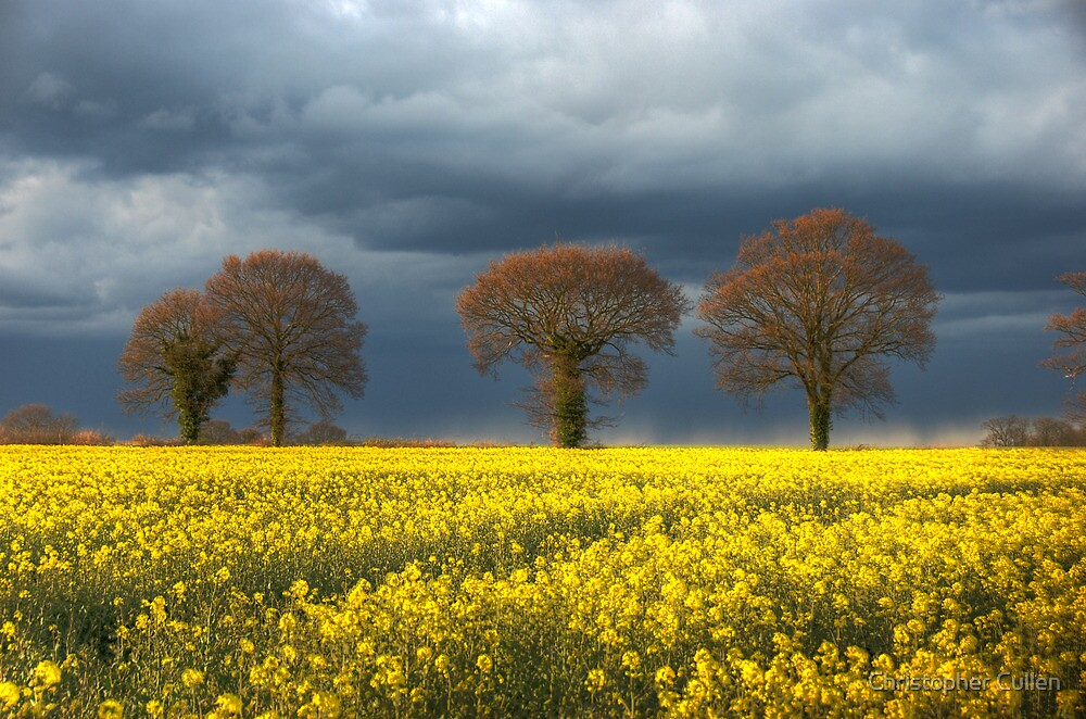 ~ Storm approaching rape field by Christopher Cullen