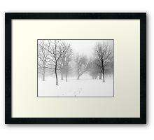 Snow, Fog and Trees Framed Print