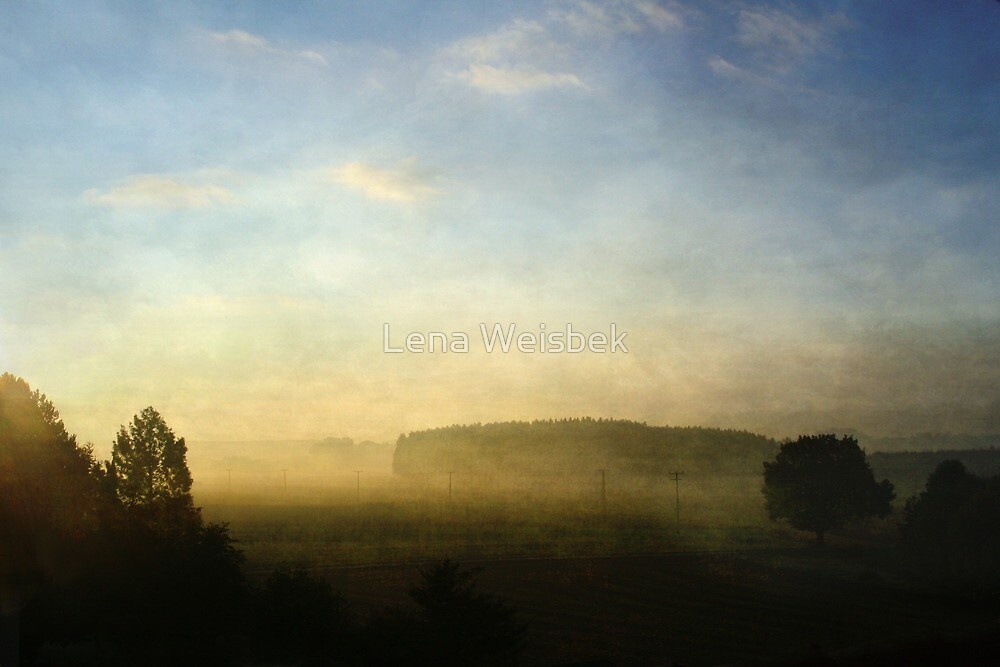 Morning Fog by Lena Weiss