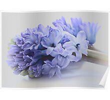 Hyacinth Bucket, pronounced bokeh! Poster