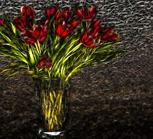 Tulips by Beatriz  Cruz