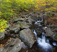 Hell Hollow Brook by Murph2010