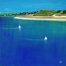 Sailing from Rock, Daymer Bay by Jenny Urquhart