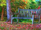 Bench for Two  by Marcia Rubin