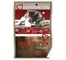 Kittens Valentine Poster