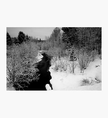Winter black and white Photographic Print