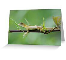 TEENAGER REPTILE Greeting Card