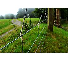 wool on a wire fence Photographic Print