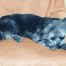 A Dog's Life,  in color by Ginny Schmidt