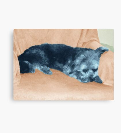 A Dog's Life,  in color Canvas Print