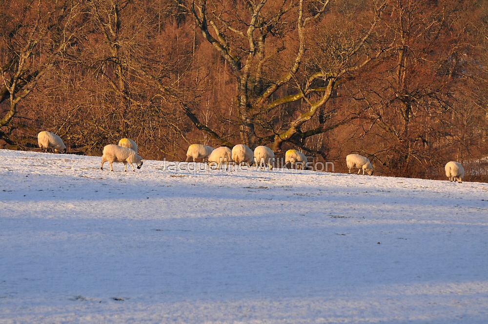 Lakeland Winter Scene by Jacqueline Wilkinson