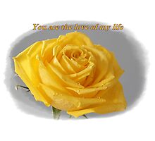 Yellow Rose Love Card and Gifts Photographic Print