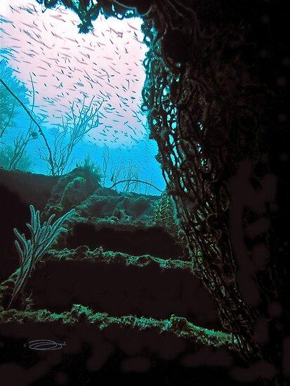 Stairway to Heaven by NICK COBURN PHILLIPS