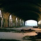 abandoned train station - 35mm by iannarinoimages
