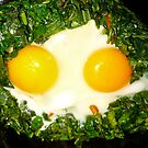 Eggs or Eyes? by D. D.AMO