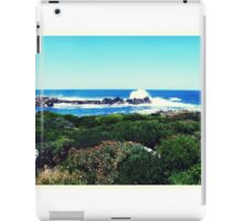 Landscape in South Africa iPad Case/Skin