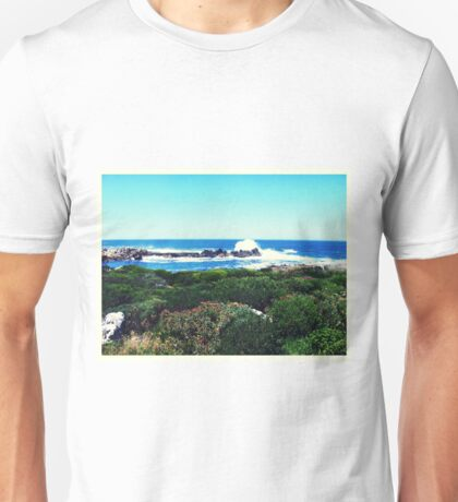 Landscape in South Africa Unisex T-Shirt