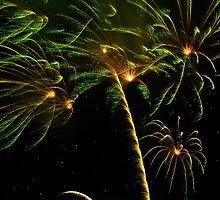 Sydney 2011 fireworks in palm tree shape by Leonardo Tarjadi