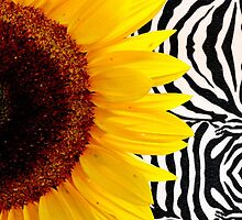 Bright Yellow Sunflower on Zebra Print Stripes by Blkstrawberry