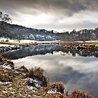 Frosty morn&#x27; on the river Brathay by Shaun Whiteman