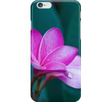Pink Plumeria with Dew iPhone Case/Skin