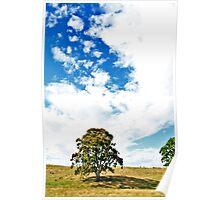 My Australia  Poster