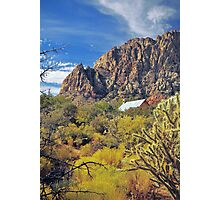 WRANGLERS ROOST Photographic Print
