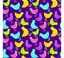 birds pattern  Photographic Print