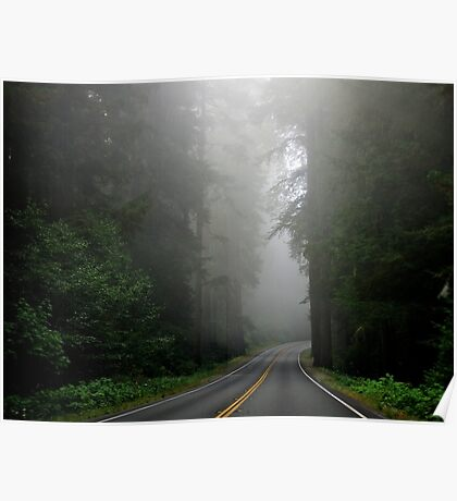 Foggy road through nature's giants, the Redwoods Poster