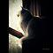 """Kitty In the Window"""