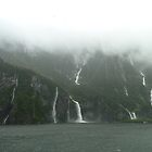 Milford Sound, New Zealand. by joycee