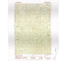 USGS Topo Map Oregon Roman Nose Mtn 281307 1984 24000 Poster