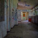 Abandoned Lunacy by Jen Waltmon