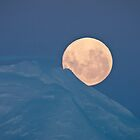 Antarctic moonrise by Neville Jones