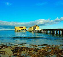 Pier buildings, Queenscliff pier by kat86
