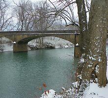 The old Swimming Hole an Bridge, Elkins Arkansas by David  Hughes