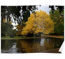 Autumn the Salmon Ponds, Tasmania Poster