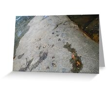 Rock at Murray Falls Greeting Card