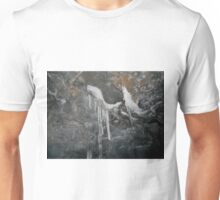 Inside the Ice Cave 1 Unisex T-Shirt