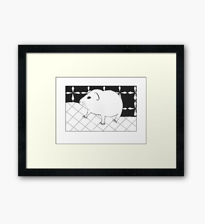 Adorable guinea pig Framed Print