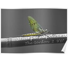 Mayfly on a fishing rod Poster