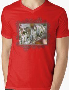 Frosty Lotus Berthelotii Mens V-Neck T-Shirt